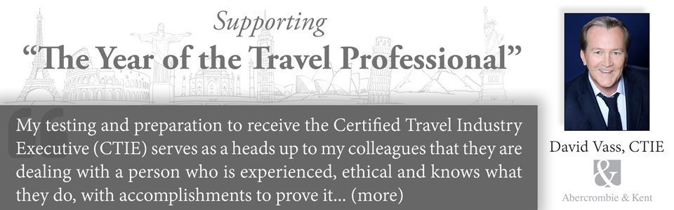 Year of the Travel Professional David Voss