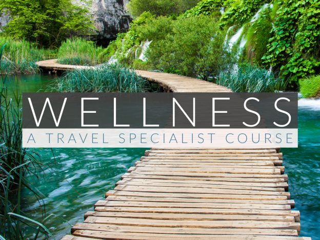 Wellness Travel Specialist Course: Premium Access course image